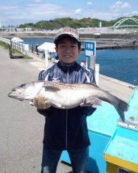 KIDS釣果、イワシののませ釣りでスズキ78cm!!