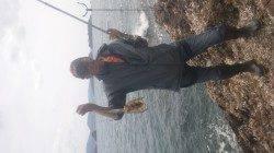 湯浅の磯でのヤエン釣り釣果