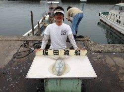 初めての渡船、沖磯でエギング、2キロアップのアオリ♪