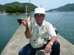 津居山漁港小島岸壁へ良型キス狙い釣行!