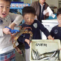 堺漁港 サビキでアジ・マイワシ・サバ カニのオマケも