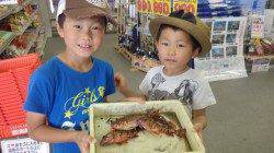 堺漁港 ガシラ・イガミなどのキッズ釣果