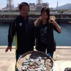 マリーナシティ海釣り公園、朝からイワシ好調!タコの釣果も♪