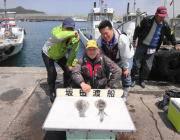 黒島の磯、ヤエン快釣中♪アオリイカが良く釣れています