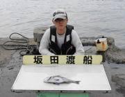衣奈の筏でチヌ〜38cmの釣果