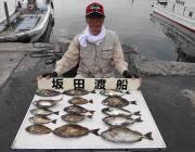 黒島の磯 ウキ釣りでアイゴ16匹