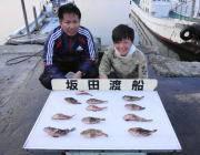 黒島の磯 ワーム使用でガシラ12匹