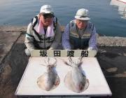 黒島の磯 夜釣りでアオリイカ2.3kg