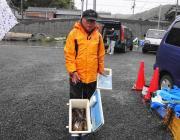 黒島の磯、さけかすでアイゴ35匹釣りました!