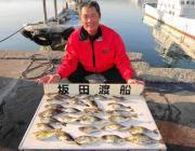黒島の磯 アイゴ数釣り楽しめます