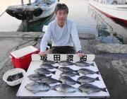 鷹島のカンドリにてグレ快釣!