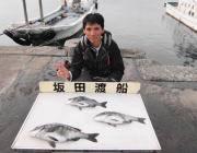 黒島の筏☆ナイスサイズのチヌ