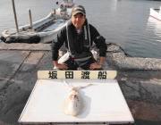 黒島の筏 ウキ釣りでキロUPのアオリイカ