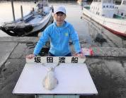 黒島の磯 パープルのエギで1.3kg