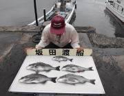 黒島の筏 チヌ〜42cm5匹の釣果