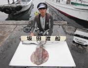 黒島の磯 アオリイカ~2.7kg