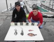 エギングで1.9kgのアオリイカ☆ 黒島の磯
