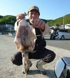 神谷 ヤエンでアオリイカ〜1.2kgの釣果