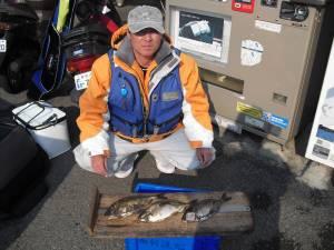 大磯 フカセ釣りでアイゴ〜30cm3匹