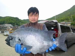 神谷一文字 ウキ釣りにイシダイ60cmがヒット