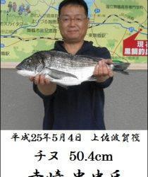 上佐波賀 年無しチヌ50.4cm