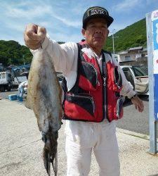 神谷一文字 ヤエン&ウキ釣りでアオリイカ〜1.2kg
