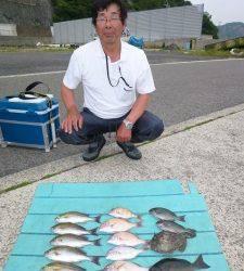 グレ、カワハギなど色々釣れました!神谷カゴ釣り釣果