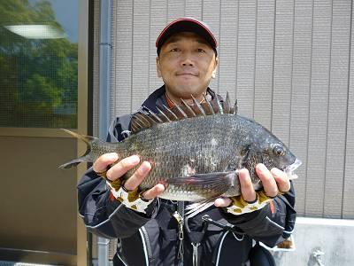 湯浅の磯 チヌフカセ釣りの釣果