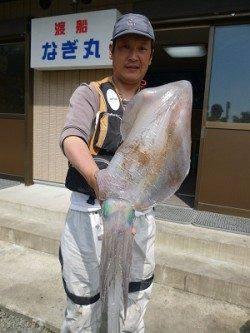 イカ ウキ釣りも好調です!!〜湯浅の磯での釣果〜