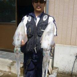 アジを使ってウキ釣り☆アオリ1.66kg〜☆