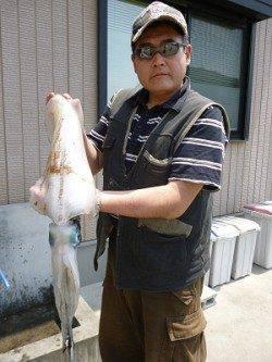 ヤエンでアオリ2kg UP ↑ ウキ釣りで60cmのマゴチが釣れました!