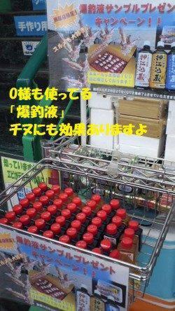 【芦屋店より発信】神戸空港のチヌ情報