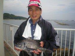 シラサの探り釣りで魚種多様に釣れました