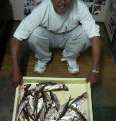 沖一文字北 サビキで良型アジ釣れてます!