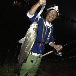 紀ノ川河口で72cmのシーバス2本GET!