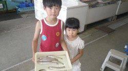 堺漁港 投げ釣りでキス〜25cmのキッズ釣果
