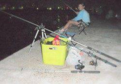 新浜漁港でサビキでアジ・ガシラ&ちょい投げで穴子
