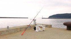 洲本港で投げ釣り(引き釣り)でキスの釣果、良く釣れます!!