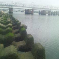 淀川河口 玉ウキ仕掛けでカワアナゴ♪