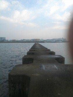 武庫川河口 探り釣りでタコ2匹 朝1時間の釣行