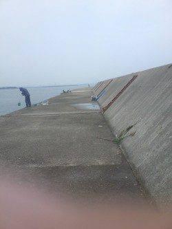 武庫川尻一文字 オクトパッシングでタコ2匹☆多い人は30匹の釣果も