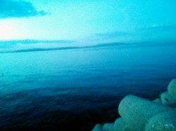 東二見 粘った末にエギングでメスアオリイカ700gがヒット!