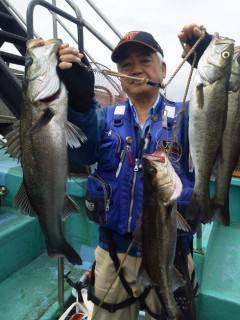 岸和田一文字 ウキ釣りでハネ〜68cmの釣果