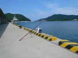 津居山港 アスリートカップ終了後に、投げ釣りでキス〜17cm☆