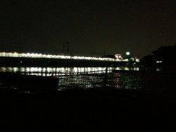 武庫川河口、ぶっこみ釣りでウナギの釣果