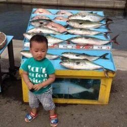 マリーナシティ海洋釣り堀 ファミリーで大物楽しめてます