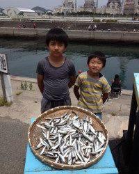 マリーナ海釣り公園、イワシいっぱい釣れてお子さんも大満足♪