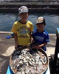 マリーナシティ海釣り公園 サビキの豆アジいぜん好調