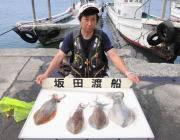 ヤエンでアオリイカ2.2kg 黒島の磯