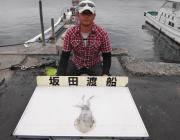 黒島の磯 アオリイカの釣果
